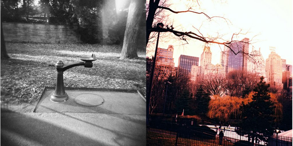 nyc analog central park photography by wendy g photography