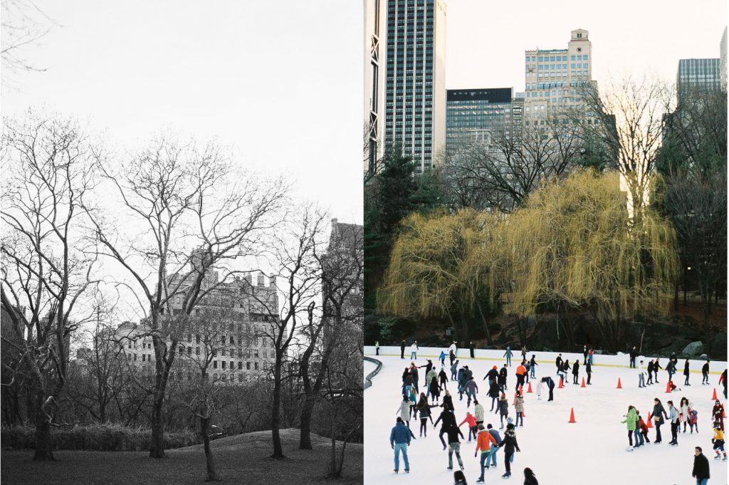nyc central park analog street photography by wendy g photography
